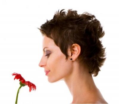Kosmetyki Do Włosów Kategoria Włosy Krótkie Obraz